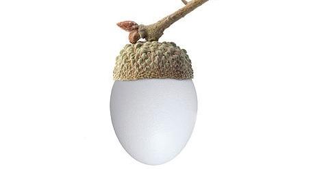 Egg... acorn... get it?